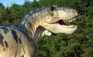 Dino outside