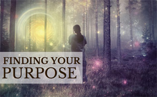 Man standing in field with light: Finding Your Purpose in Life