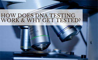Microscope: DNA Testing 101: