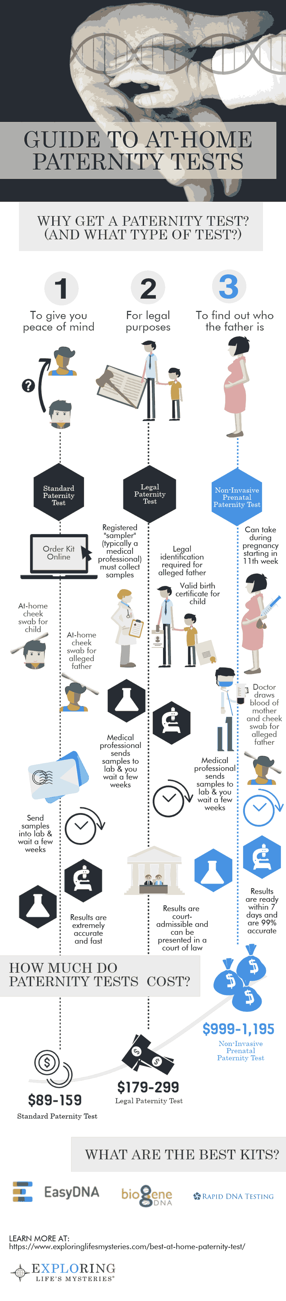 Paternity Test Infographic