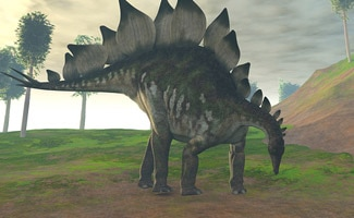 stegosaurus facts fossils found on four continents