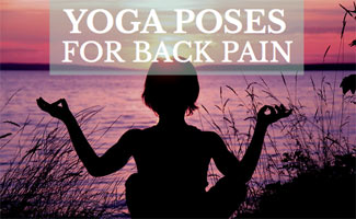 yoga poses for back pain  exploring lifes mysteries